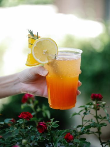 Sun Tea Recipe Perfect for Summer: Plus Is It Safe? | Comfy Goat